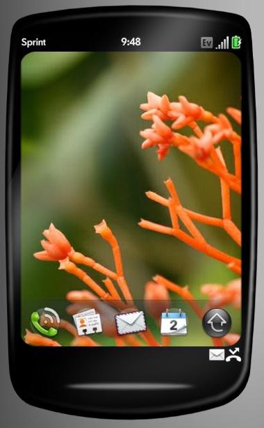 Palm-C40-concepto