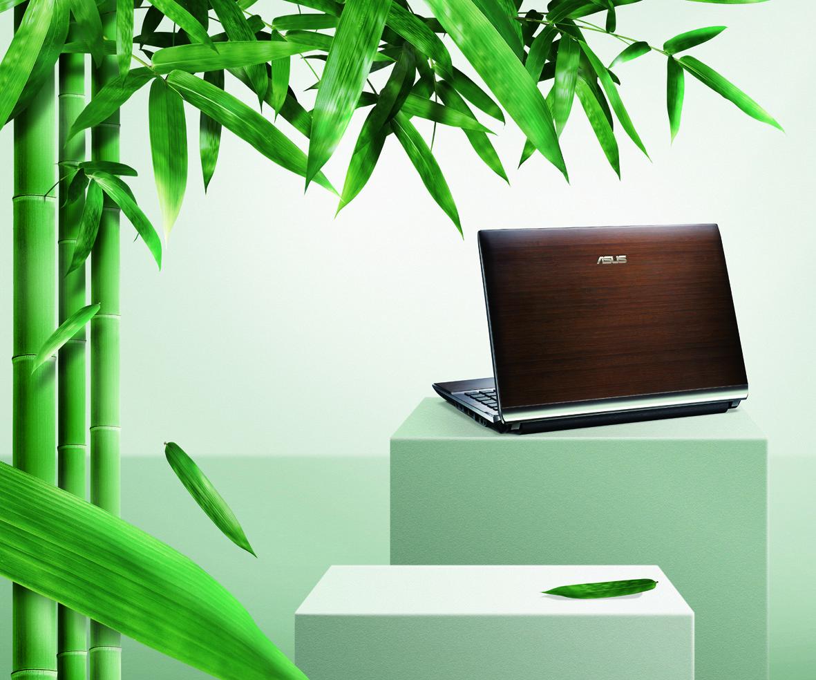 Bamboo Print-1