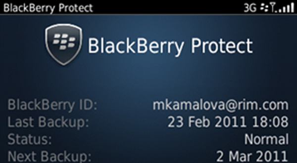 blackberry-protect-12