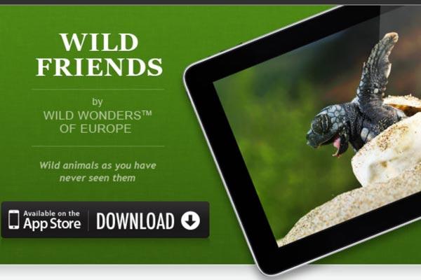 wildfriendsgd_0
