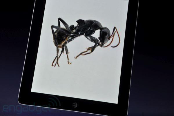 apple-ibooks2-ene-2012-10