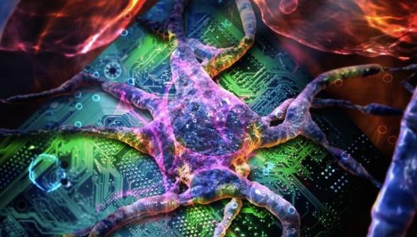virus-energy