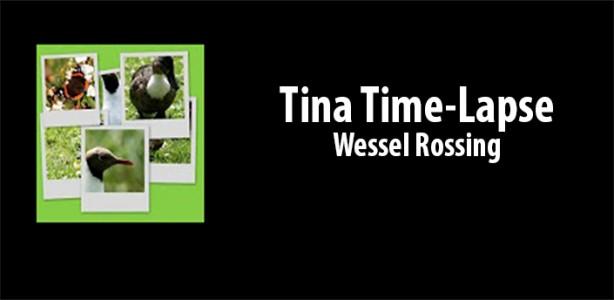 Tina Time Lapse