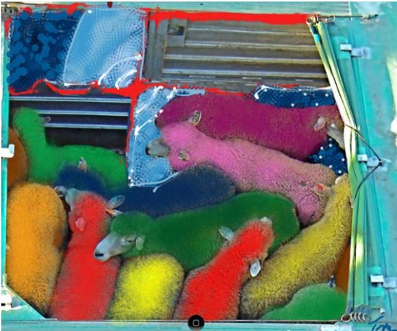 ipad-finger-paint-580x483