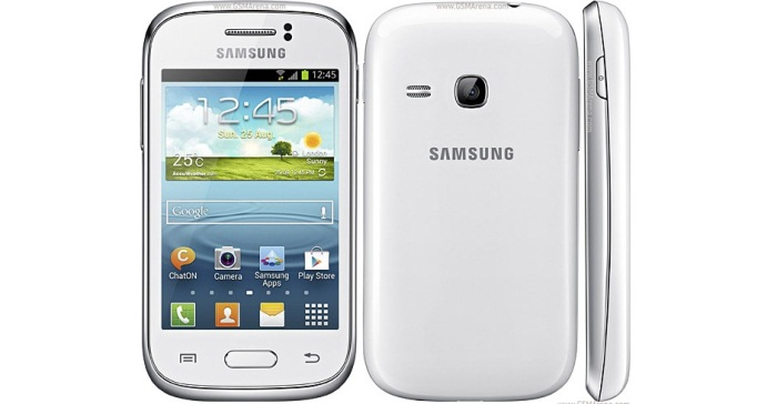 Samsung Galaxy Young_2