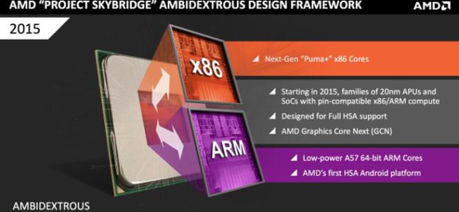 AMD-SkyBridge- (1)