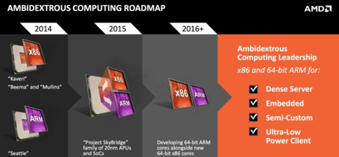 AMD-SkyBridge- (2)