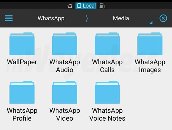Carpeta WhatsApp Calls en Android