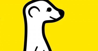 meerkat-stream-facebook