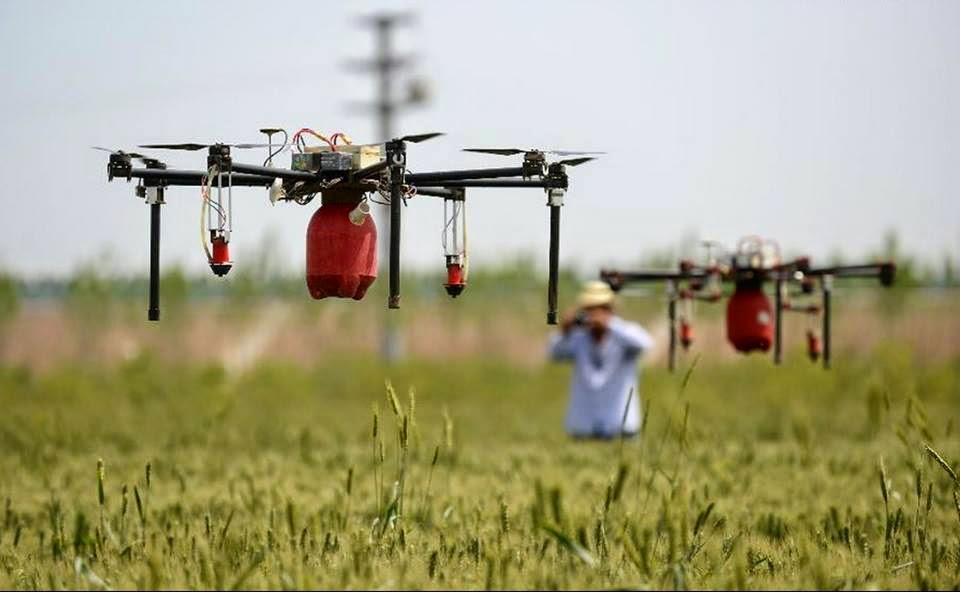 dron-usos-agricultura