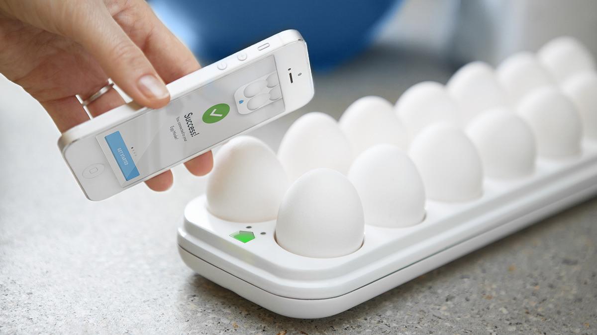 Egg Minder Wink