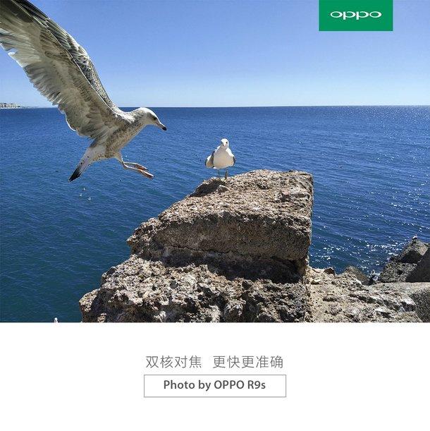 oppo-r9s-ejemplo-foto