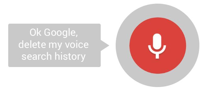 google-voice historial