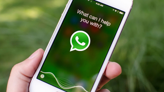 siri-llega a whatsapp