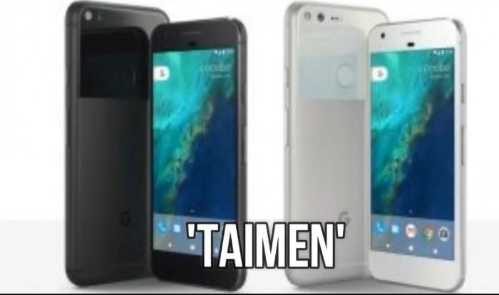 google-pixel-2-taimen