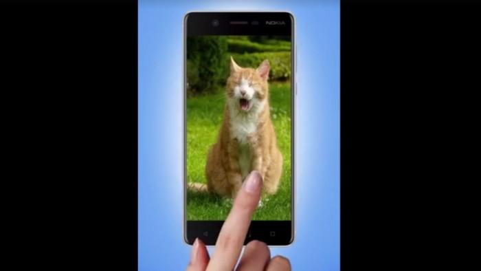 Nokia-8-Cat-Day